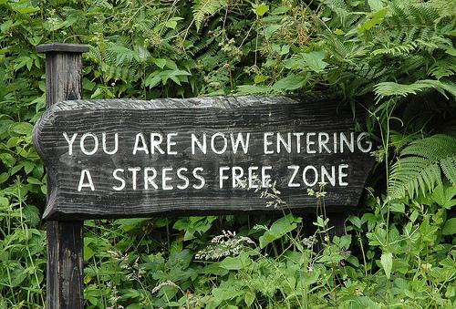 Преодолеть стресс | Интересные факты и текущие события - Путеводитель ...