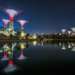Super Trees in Singapore's National Park