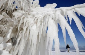 Man walks past an ice-covered tree along Lake Michigan in Chicago