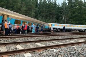 Train driver dead